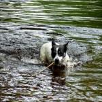 Moclips river2